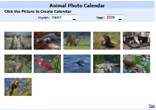 Animal Photo Calendar.png